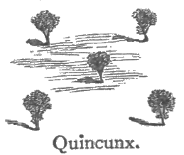 quincunx pattern
